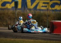 armata baby race gran forze wsk final cup adria
